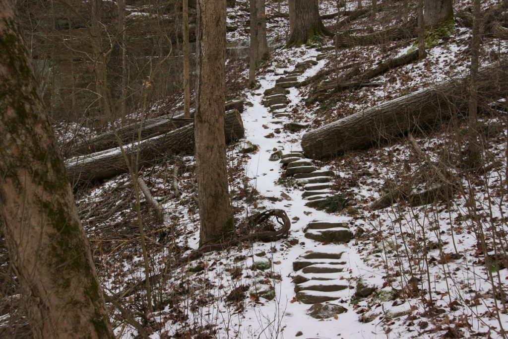 Trillium Trail stone steps take you up the hill